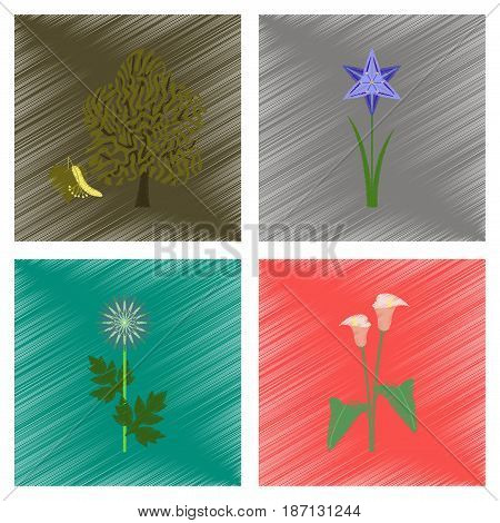 assembly flat shading style illustration of floral flower calla aster narcissus linden