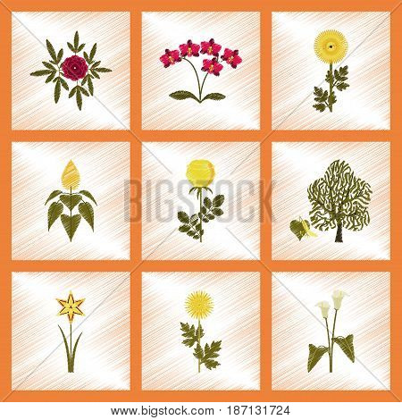 assembly flat shading style illustration of plant flower paeonia chrysanthemum orhidaceae rosa calla aster narcissus linden
