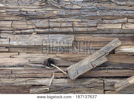 Old cracked wood geometric texture with a dark hole on it. Retro background.