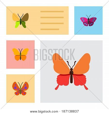 Flat Butterfly Set Of Butterfly, Danaus Plexippus, Moth And Other Vector Objects. Also Includes Archippus, Moth, Butterfly Elements.