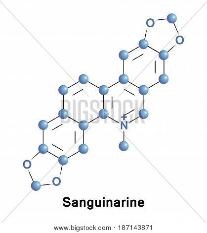 Sanguinarine is a toxic polycyclic quaternary ammonium salt. It is extracted from bloodroot, Sanguinaria canadensis, Mexican prickly poppy Argemone mexicana, Chelidonium majus and Macleaya cordata.