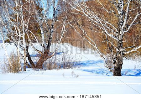 Nature Altaya pleases eye of the artist in any season of the year