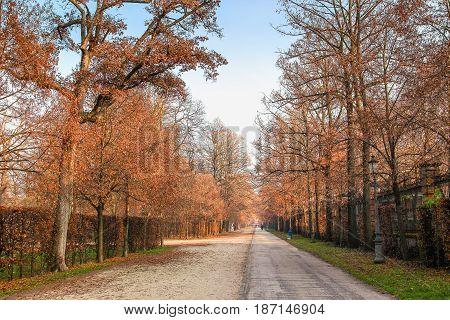 Park In Parma, Italy.