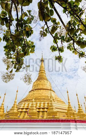 Tachileik Shwedagon Pagoda is a beautiful golden pagoda that imitates Shwedagon Paya Pagoda tourist attraction near the Thai border at Tachileik town in Shan State Myanmar (Burma)