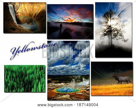 Yellowstone National Park Images Montage