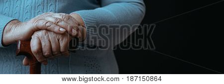 Wrinkled Woman's Hands Holding Stick