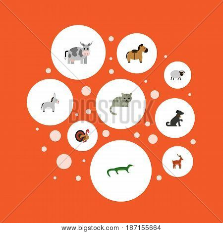 Flat Zebra, Horns, Kine And Other Vector Elements. Set Of Animals Flat Symbols Also Includes Feline, Turkey, Cat Objects.
