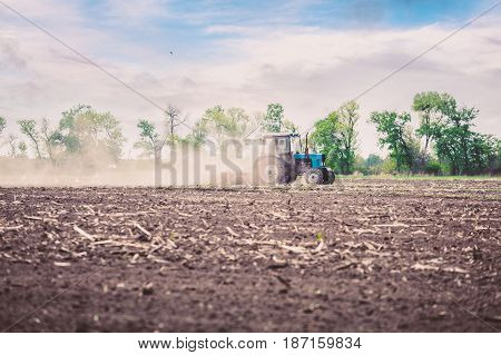 The tractor plows the field in the spring, and behind it the dust rolls and birds fly to find the food against the beautiful sunset sky. Agriculture