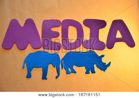 word medisa on a  abstract colorful background