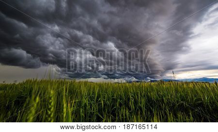 Storm Over The Fields
