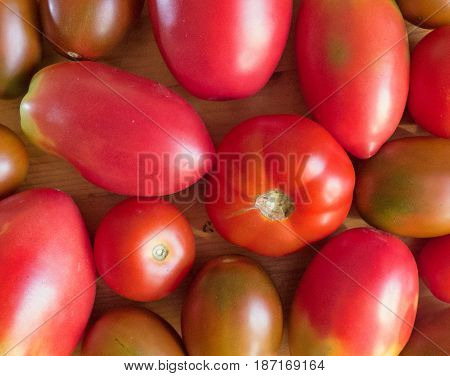 Tomato background, lot of vegetables. Red ripe and unripe tomatoes. Natural organic products, healthy food. Fresh harvest, top view.