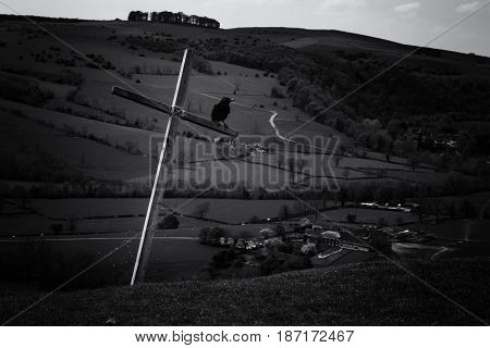 Cross and black crow on hill in Davedale,UK
