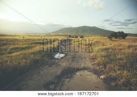 field way on the green field background