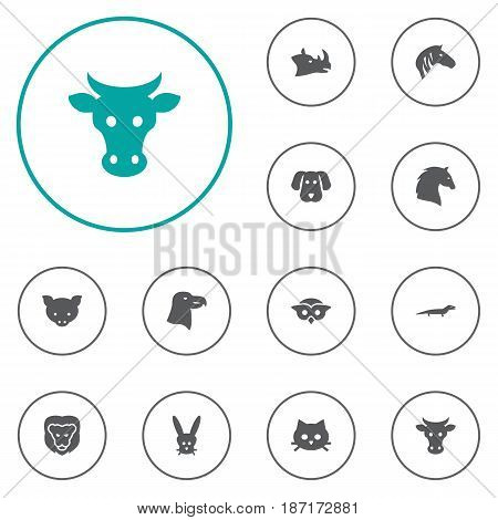 Set Of 12 Beast Icons Set.Collection Of Hound, Steed, Horse And Other Elements.