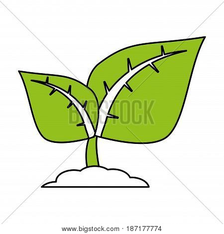 color silhouette image cartoon green leaves with ramifications on growth vector illustration