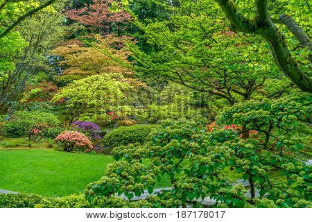 Rich colors emanate from this Japanese Garden. HDR image.