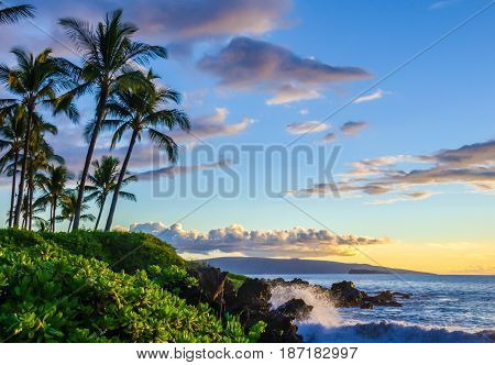 Tropical beach scene at sunset.  Palm trees and lush local foliage.  Ocean waves splashing onto lava rocks. Beautiful scenic tourist destination location at Maui, Hawaii