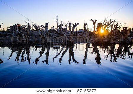 Sunset among the ruins of the flooded city of Epecuen in the Province of Buenos Aires.