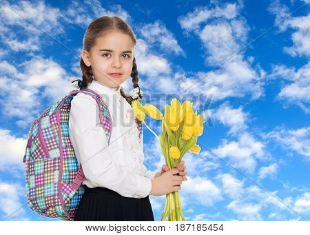 Beautiful little blond schoolgirl, with long neatly braided pigtails. In a white blouse and a long dark skirt.She is holding a bouquet of yellow tulips.On the background of green grass and blue sky with clouds.