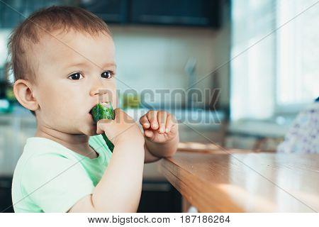 Little Boy Eating A Fresh Cucumber