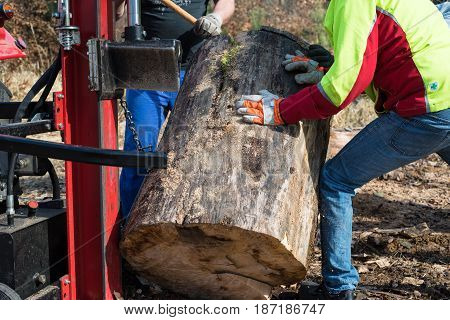 Lumberjacks With Hydraulic Wood Splitter At Tractor Machine In Forest