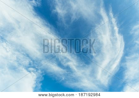 Blue Sky Cloud Like Bird. Freedom Nature Concept.