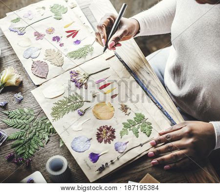 Hands Writing Detail of Dried Flowers Collection in Notebook Handmade Work Hobby