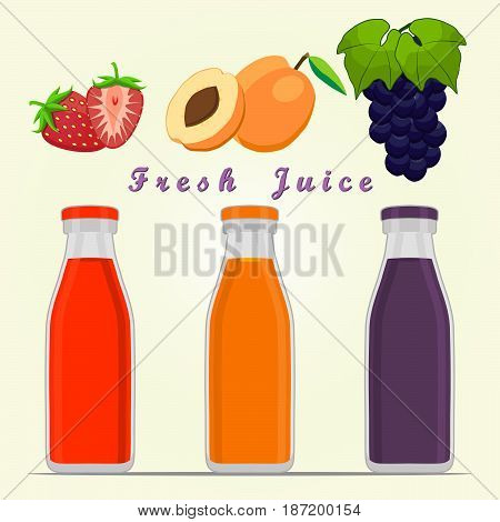Vector illustration of logo for fruit grape apricot strawberry cut sliced.Apricot drawing consisting of fruits pip ripe sweet food leaf.