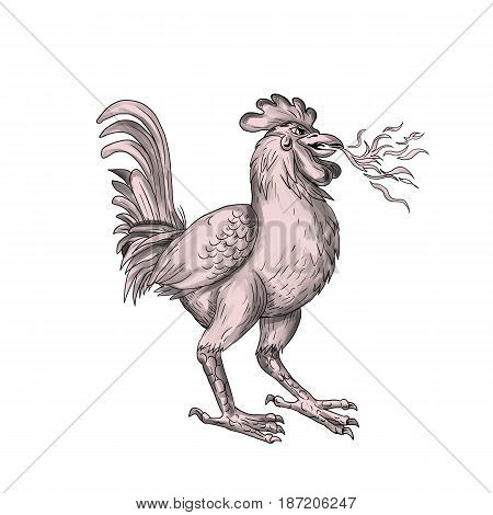 Tattoo style illustration of a Basan Basabasa or Inuhoo a fowl-like bird in Japanese mythology and folkore that is breathing fire viewed from the side set on isolated white background.