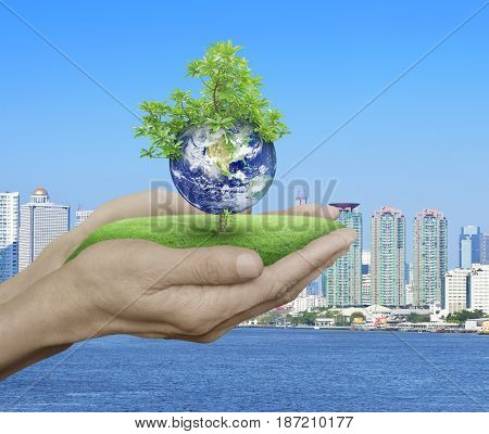 Planet and tree in human hands over city tower and river background Save the earth concept Elements of this image furnished by NASA