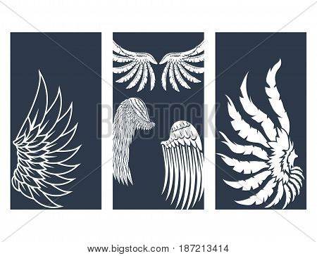 Wings hand drawn cards animal feather pinion bird freedom flight and natural hawk life peace design flying element eagle winged side shape vector illustration. Beauty haven soft anatomy graphic.
