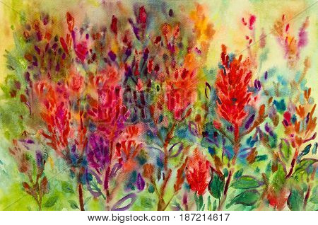 Abstract flowers watercolor original painting colorful of beauty flowers in garden in abstract background