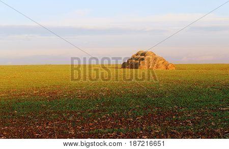 Beautiful haystack in a field on sky background. Beautiful landscape in Russia.