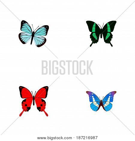 Realistic Bluewing, Beauty Fly, Sangaris And Other Vector Elements. Set Of Butterfly Realistic Symbols Also Includes Julia, Red, Sky Objects.