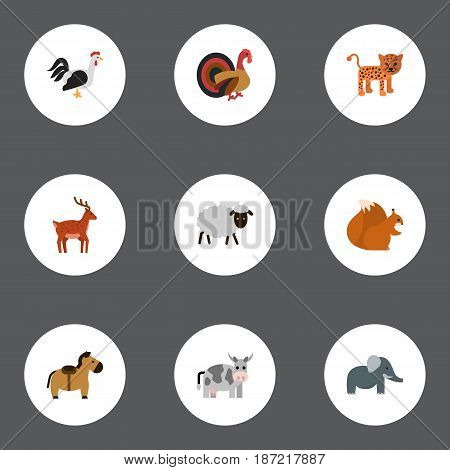 Flat Predator, Panther, Rooster And Other Vector Elements. Set Of Animals Flat Symbols Also Includes Leopard, Horse, Horns Objects.