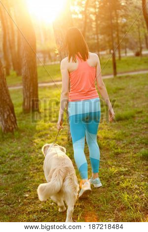 Girl with dog walking among trees, photo from back