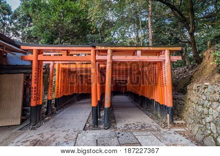 Kyoto, Japan - November 28,2015 : The Red Tori Gate at Fushimi Inari Shrine the head shrine of Inari including trails up the mountain in Kyoto, Japan.