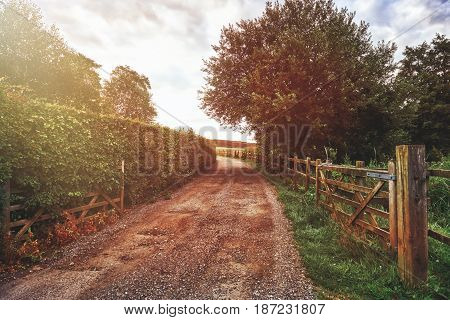 Beautiful English countryside. Stunning landscape over English countryside landscape in Summer sunrise. English country lane at sunrise.