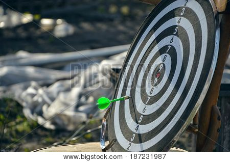 Spear in dart board game. Outdoor game vacation.