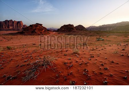 Scenic View Of Wadi Rum Against Clear Sky During Sunrise Arabian Desert Jordan