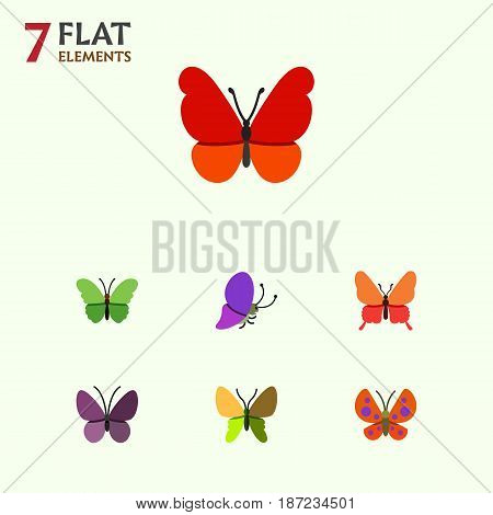 Flat Moth Set Of Milkweed, Moth, Monarch And Other Vector Objects. Also Includes Monarch, Insect, Summer Elements.