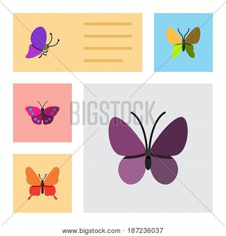Flat Moth Set Of Beauty Fly, Danaus Plexippus, Violet Wing And Other Vector Objects. Also Includes Butterfly, Moth, Summer Elements.