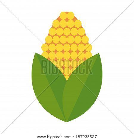 corn bioful alternative energy ethanol vector illustration