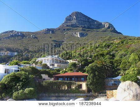 CLIFTON, CAPE TOWN, SOUTH AFRICA, HOUSES, SHRUBS AND TREES IN THE FORE GROUND AND A MOUNTAIN IN THE BACK GROUND 23jksji