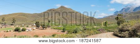A farm landscape with the Swartberg (black mountain) in the back between Hoeko and Ladismith in the Western Cape Province