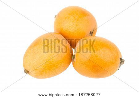 Three Ripe Loquat Isolated On White