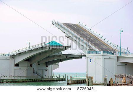 half raised drawbridge with row of pelicans