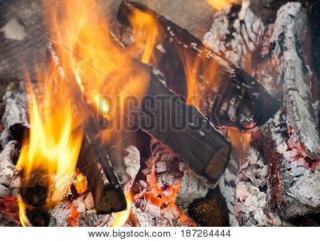 Fire flames background. Firewood is burning in the grill in the open air.