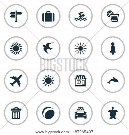 Vector Illustration Set Of Simple Seaside Icons. Elements Airplane, Beach Games, Sun And Other Synonyms Tortoise, Mammalian And Freedom.