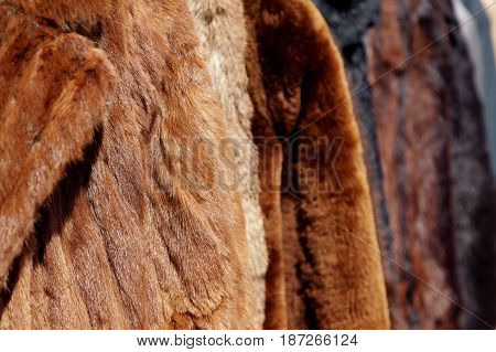 Range of various shades of brown fur coats hanging on a rail with shallow depth of field and space for text.